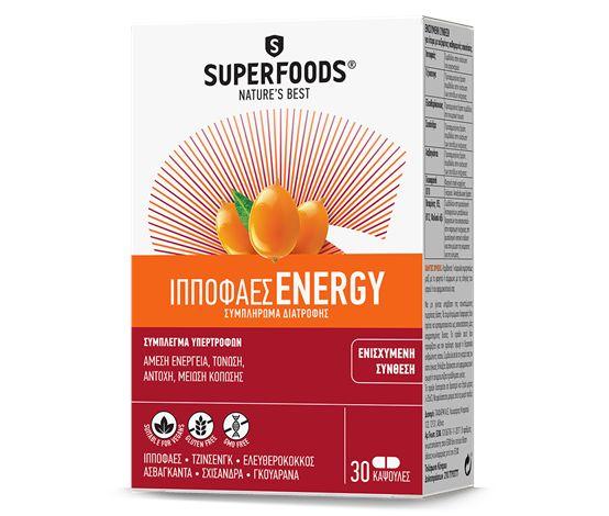 ippofaes energy