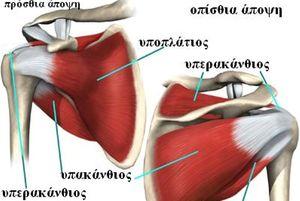 Ρήξη των στροφέων μυών του ώμου