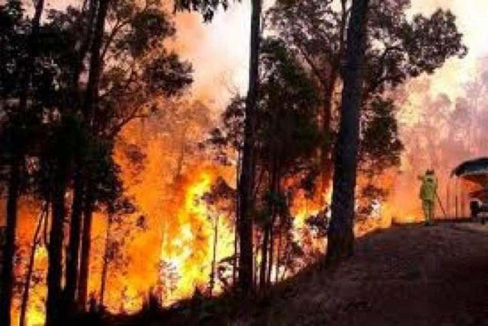 Πυρκαγιές σε Ιωάννινα και Μεσσηνία