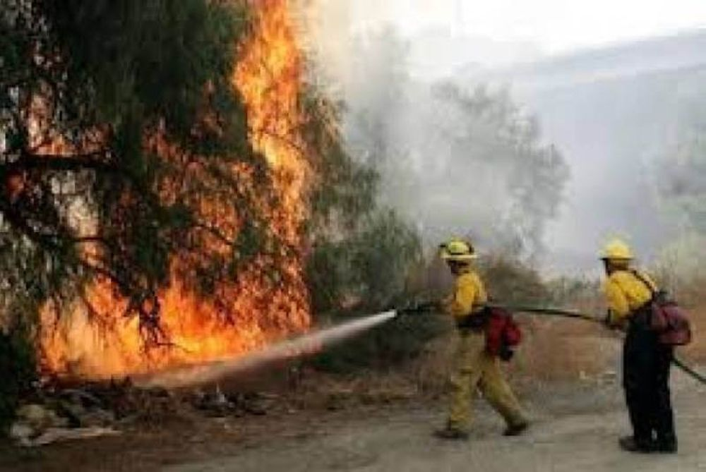 Υπό μερικό έλεγχο η φωτιά στην Χαλκιδική