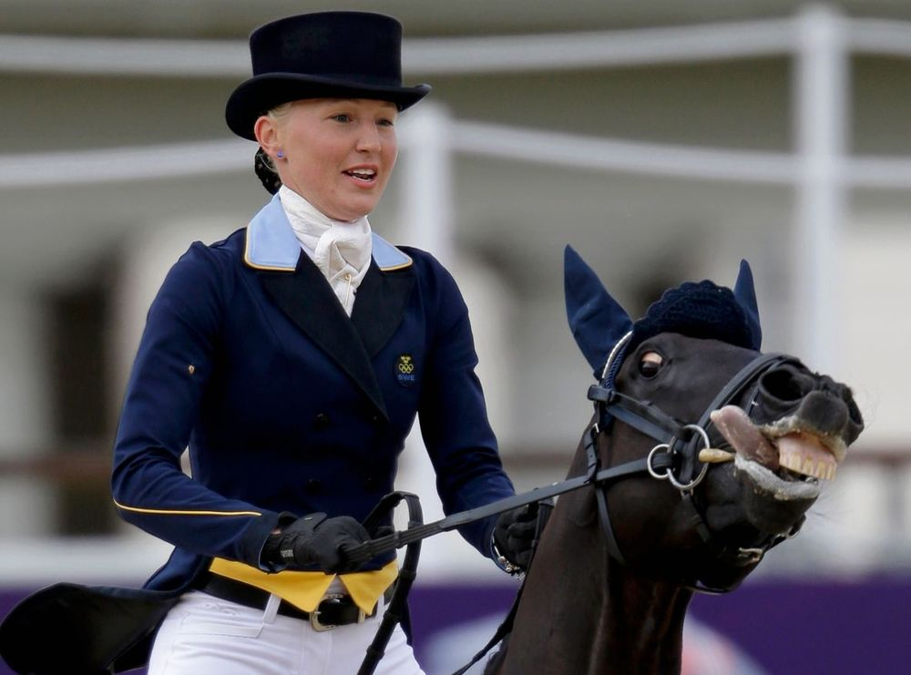 Oλυμπιακοί Αγώνες 2012: Iππασία: Αλογο... φόρτωσε με τον αναβάτη του
