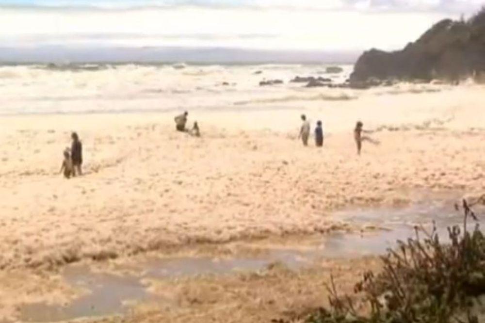 Παραλία της Αυστραλίας έβγαλε... αφρούς (Video)