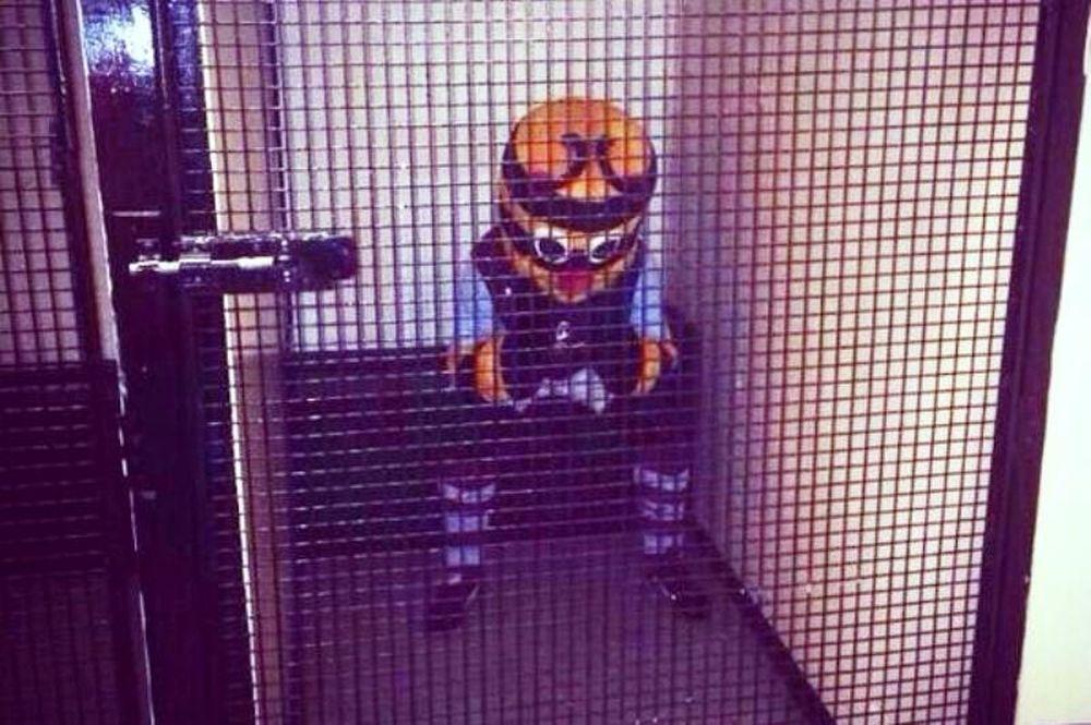 Μπέρνλι: Στη φυλακή η μασκότ!