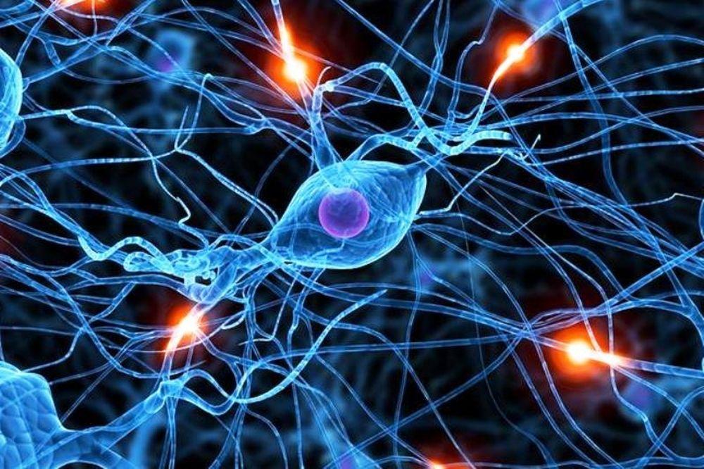 Πώς το internet κρατά τον εγκέφαλο σε εγρήγορση