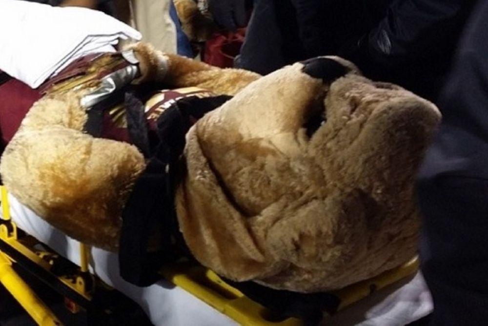 Αμερικανικό ποδόσφαιρο: Πήραν με το φορείο τη μασκότ! (photos)