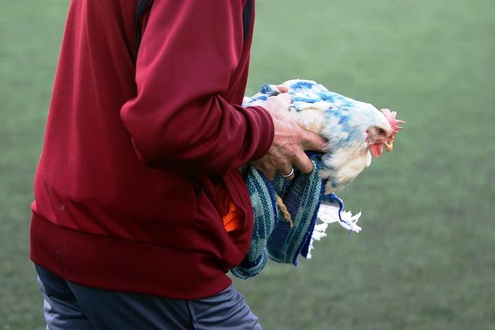 Προοδευτική–Ιωνικός: Πέταξαν κότες στο γήπεδο (videos)