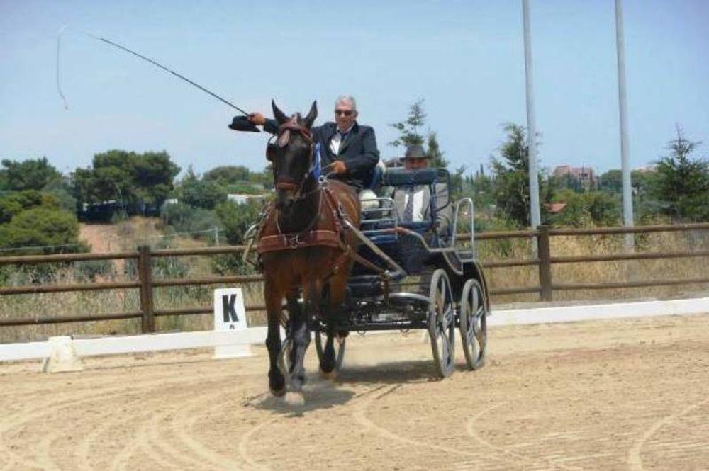 Αμαξοδήγηση: Οι Πανελλήνιοι Αγώνες στο Μαρκόπουλο