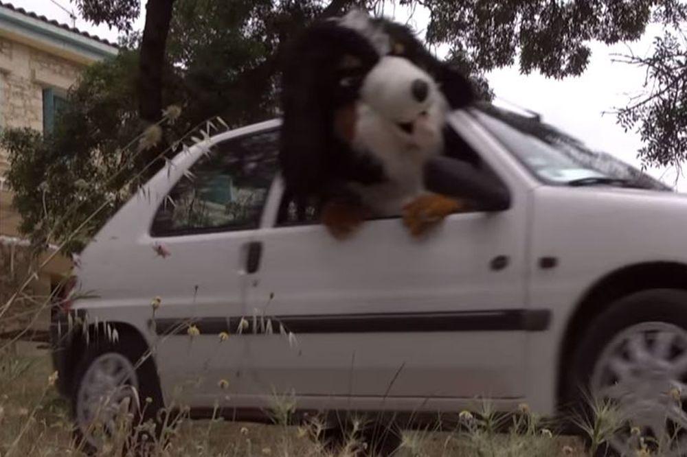 Τα «σπάει» και πάλι ως σκύλος ο Ρεμί! (video)