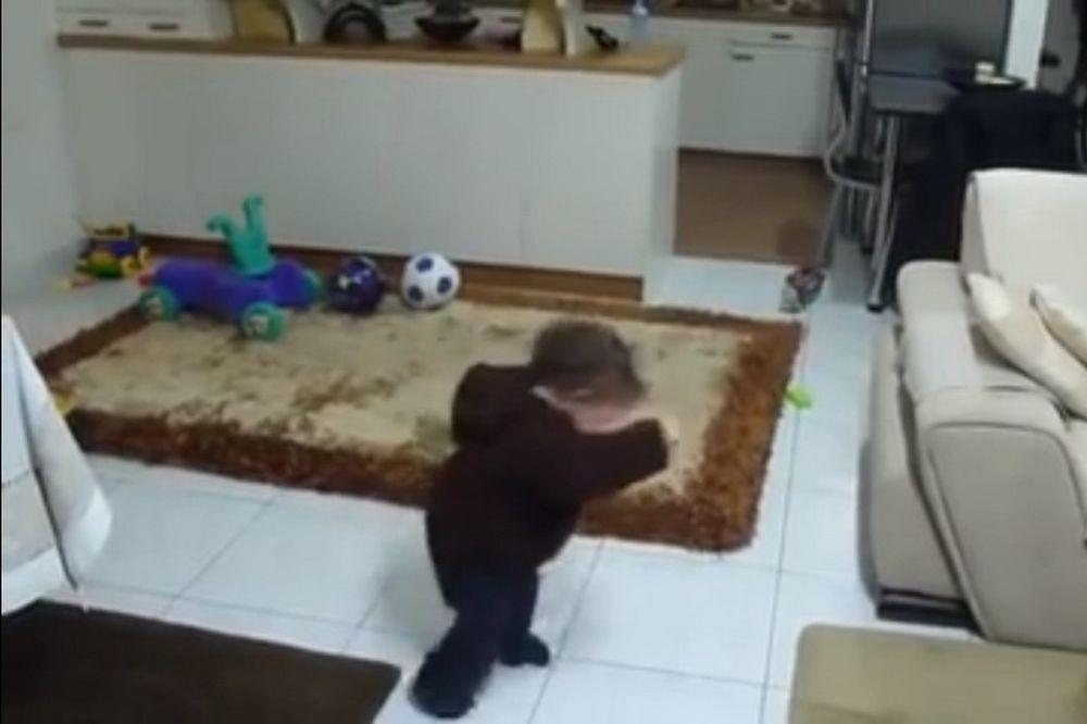 Το ζεϊμπέκικο του μικρού Γιάννη που έχει… σπάσει το ίντερνετ! (video)