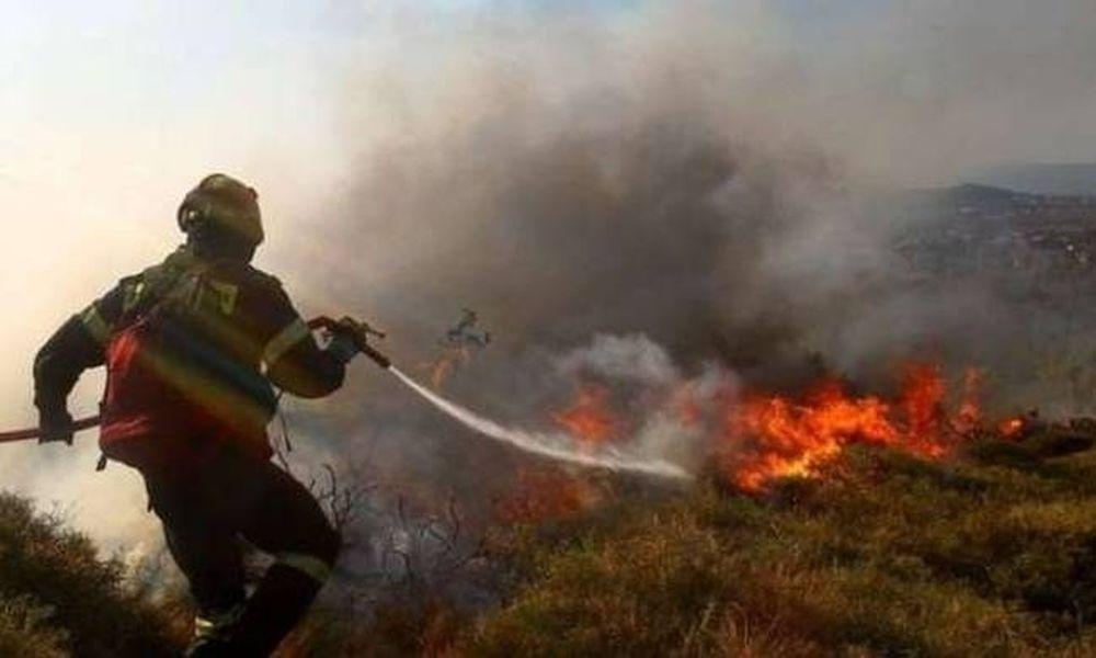 Φωτιά στην Άνω Ποταμιά Ακράτας