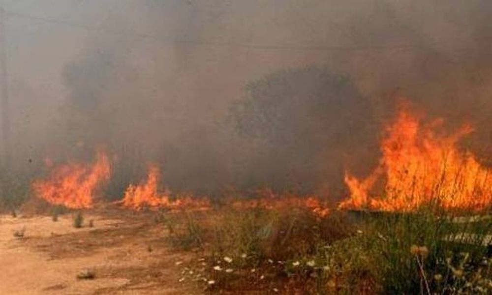Υπό μερικό έλεγχο η φωτιά στην Zάκυνθο