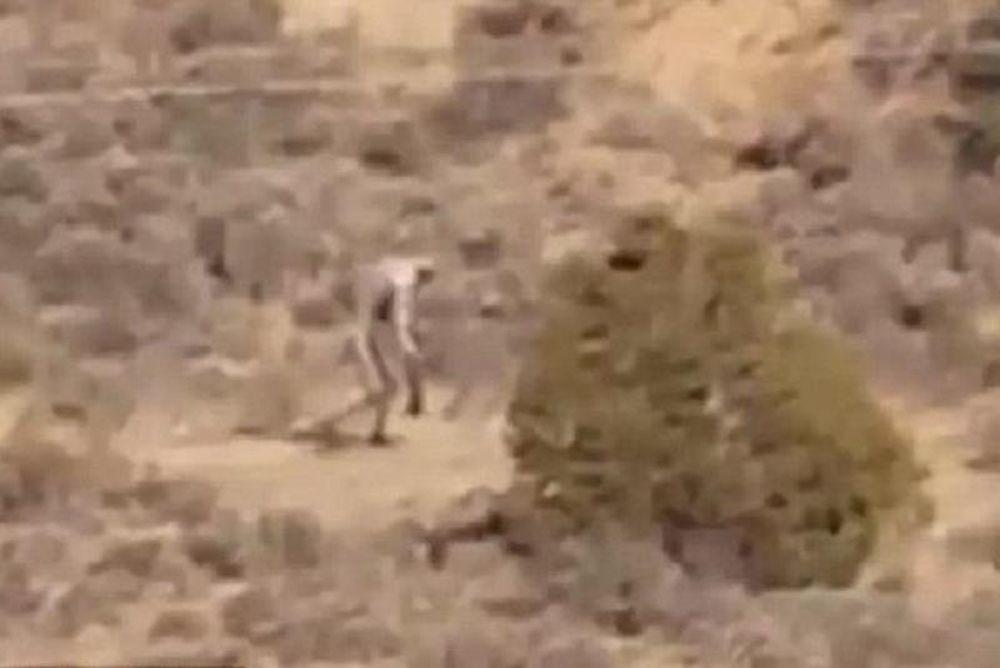 Ο Μεγαλοπόδαρος στην έρημο της Πορτογαλίας; (video)