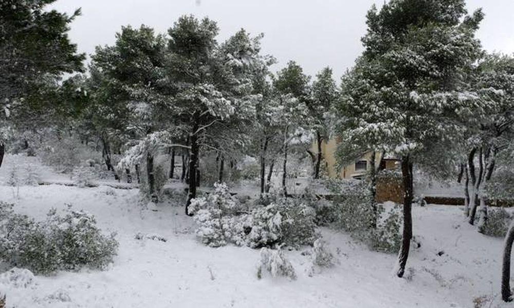 Καιρός: Προειδοποίηση «βόμβα» από την ΕΜΥ - Ο χιονιάς ήρθε για να μείνει!