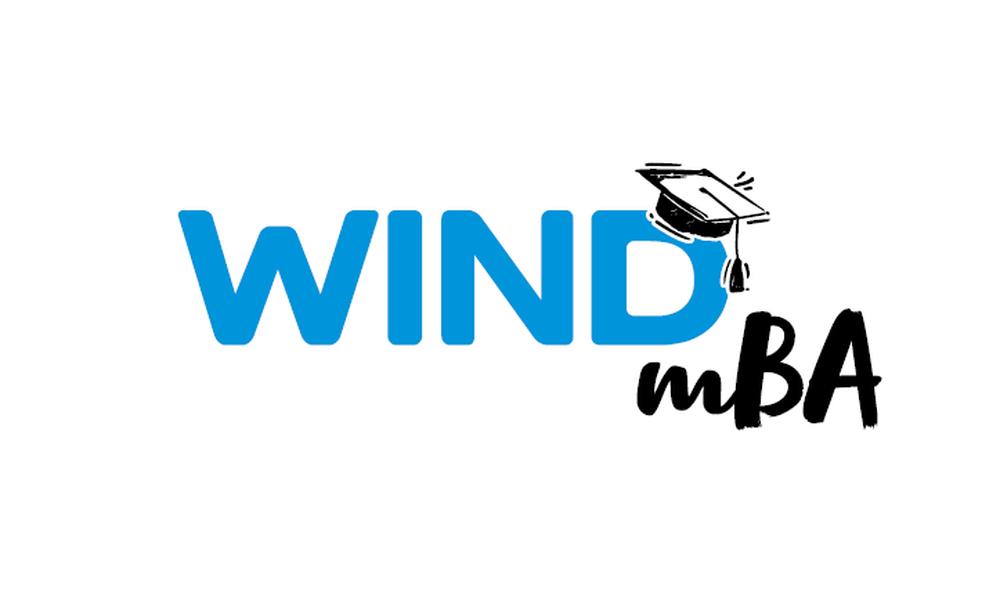 «Mini mba» για τους ανθρώπους της δημιουργεί η WIND