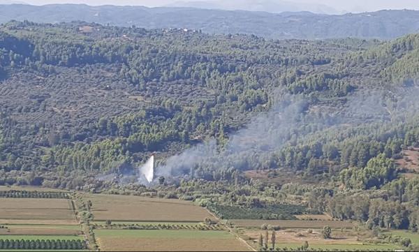 Φωτιά Ηλεία: Επιτυχής επιχείρηση κατάσβεσης στις όχθες του Αλφειού (video+photos)