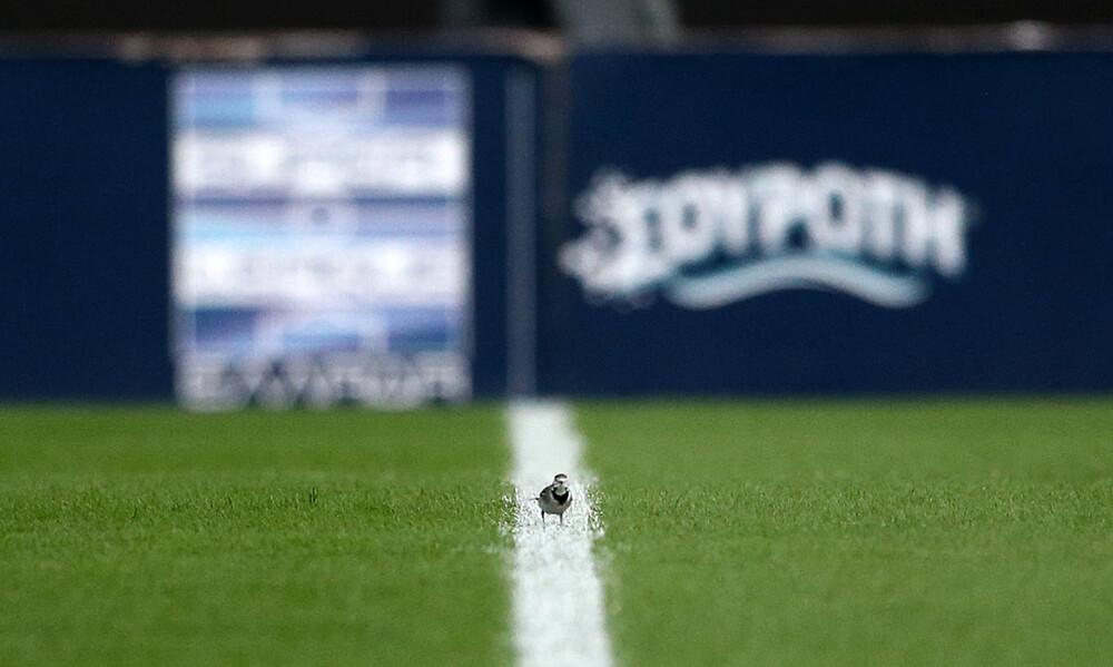 Αυτό είναι το νικητήριο ψηφοδέλτιο της Super League (photo)