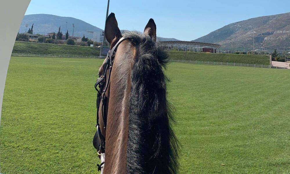 Ιππασία: Ξεκινά το Athens Equestrian Festival 2019 & Longines FEI Jumping Nations Cup