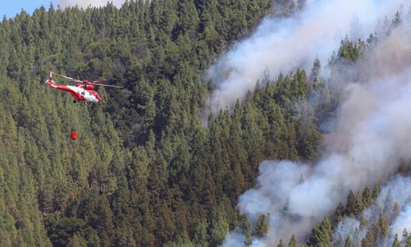 Γκραν Κανάρια: Στάχτη έγιναν 10.000 στρέμματα - Μάχη με τις φλόγες για δεύτερη μέρα