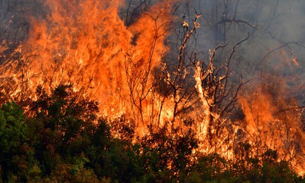 Φωτιά ΤΩΡΑ: Δείτε που έχει πυρκαγιές σε όλη την Ελλάδα