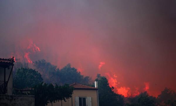Συνεχής ενημέρωση:  Πύρινη κόλαση στην Εύβοια, εκκενώθηκαν 4 οικισμοί