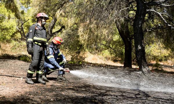 Πού είναι υψηλός ο κίνδυνος πυρκαγιάς την Παρασκευή