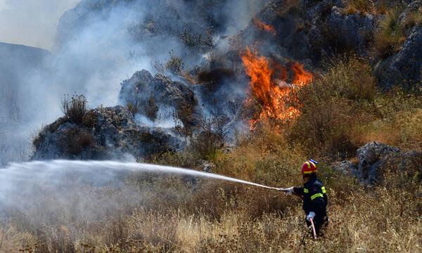 Φωτιά ΤΩΡΑ: Πύρινα μέτωπα σε Μεσσηνία, Ηλεία και Ασπρόπυργο –  Ανετράπη πυροσβεστικό όχημα