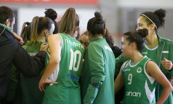 Κύπελλο Γυναικών: Ολυμπιακός, Εσπερίδες, Ελευθερία και Παναθηναϊκός στους «4»