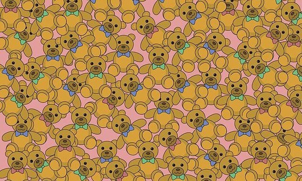 Η viral σπαζοκεφαλιά - Μπορείς να βρεις το αρκουδάκι χωρίς παπιγιόν; (photos)