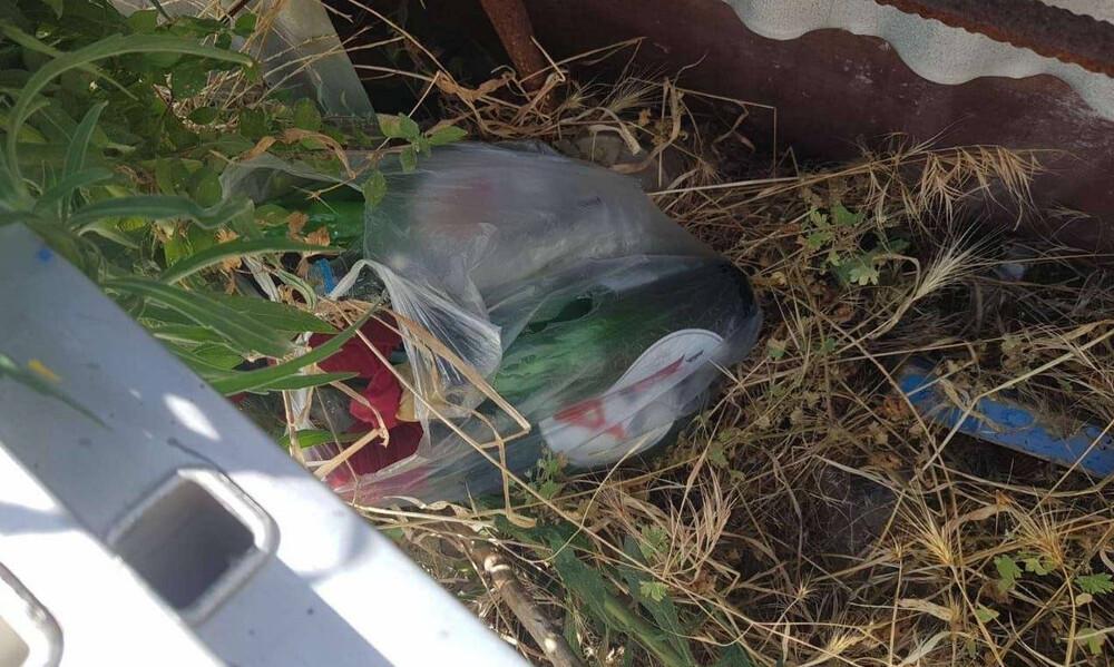 Βρέθηκαν μολότοφ και ξύλινα κοντάρια κοντά στο γήπεδο της ΑΕΚ! (photos)