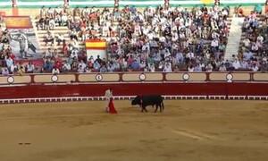 Η εκδίκηση του ταύρου: Κάρφωσε τον ταυρομάχο κατευθείαν στα… οπίσθια