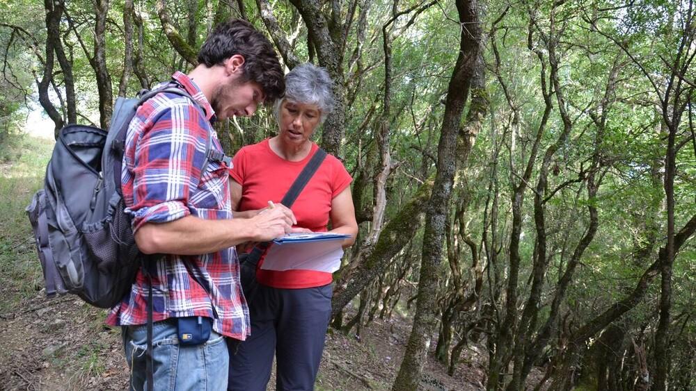 Έρευνα: Αυτά είναι τα έξι «ιερά» δάση της Ηπείρου