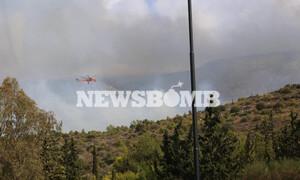 Φωτιά ΤΩΡΑ - Αθήνα: Οι πρώτες εικόνες από την μεγάλη φωτιά στον Βύρωνα