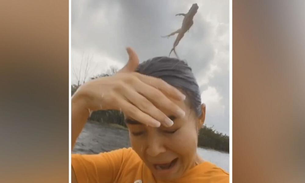 Εκανε καγιάκ! Αρχισε να ουρλιάζει όταν στο κεφάλι της προσγειώθηκε μια... (vid)