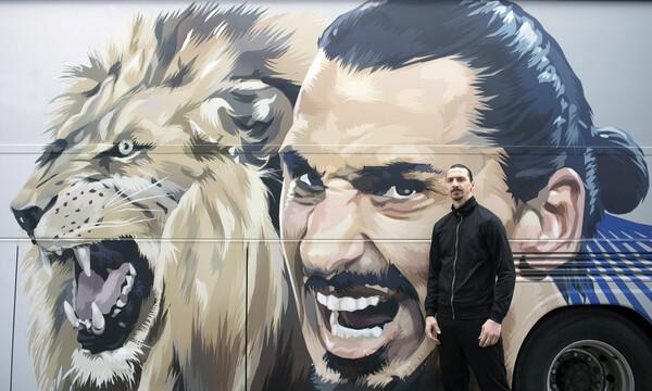 Σάλος με τον Ζλάταν Ιμπραΐμοβιτς - Σκότωσε λιοντάρι και πήρε τρόπαιο το κεφάλι του (photos)
