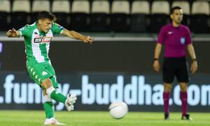 Παναθηναϊκός-Αστέρας Τρίπολης 2-2: Λίγος ο Γκορτσίλας, άτυχο το «τριφύλλι» (videos+photos)