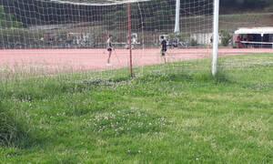 Από γήπεδο… χωράφι: Έτσι έγινε μετά από έξι μήνες αδράνειας (photos)
