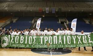 Ισόβιος τροπαιούχος ο Παναθηναϊκός - 41 τίτλοι σε 26 σερί σεζόν (video+photos)