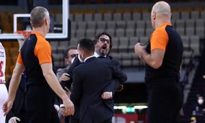 Έπαθε... Λουτσέσκου o Τρινκιέρι - Απίθανη δήλωση για τη Euroleague