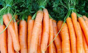 5 τροφές με αντικαρκινικές ιδιότητες που πρέπει να τρώτε κάθε μέρα (εικόνες)