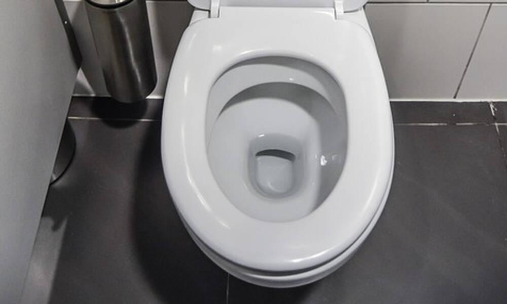 Τρόμος σε κάμπινγκ - Φίδι ξετρύπωσε από τη λεκάνη τουαλέτας (photos)