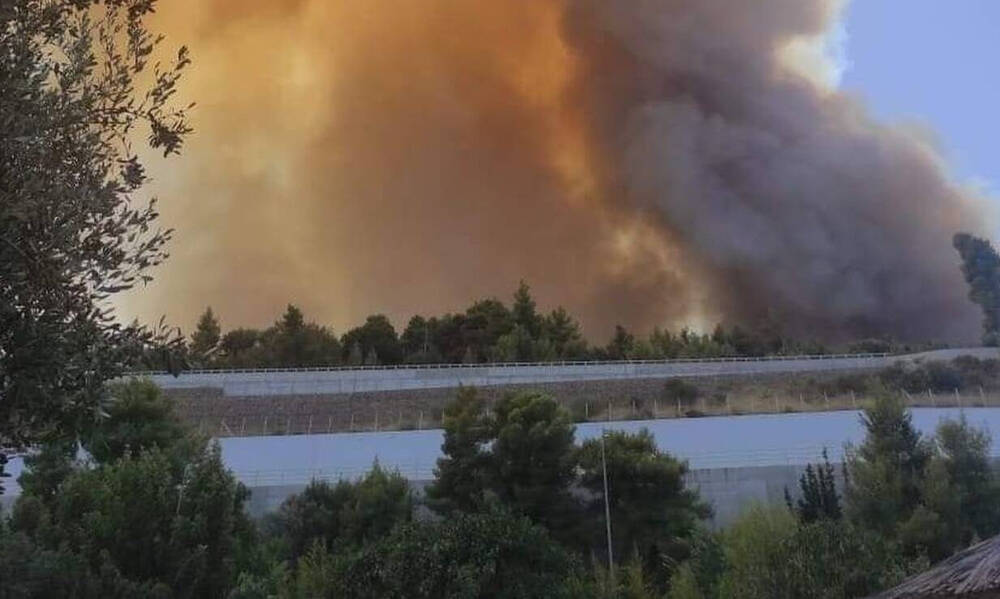 Φωτιά στην Αχαΐα: Δραματική η κατάσταση - Καίγονται σπίτια, εκκενώθηκαν οικισμοί