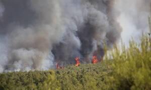 Φωτιά στην Βαρυμπόμπη: Εκκενώνεται ο οικισμός Αδάμες - Πέρασε στη Βαρυμπόμπη η πυρκαγιά