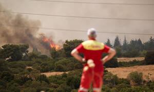 Φωτιά στη Βαρυμπόμπη: Ανεξέλεγκτο το πύρινο μέτωπο – Εκκενώνονται και οι Θρακομακεδόνες