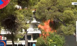 Ανεξέλεγκτη η φωτιά - Καίγονται σπίτια και πολυκατοικία στην πλατεία Βαρυμπόμπης (video)