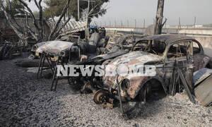 Φωτιά Βαρυμπόμπη: Οδοιπορικό στα καμένα - Εικόνες ανείπωτης θλίψης και καταστροφής