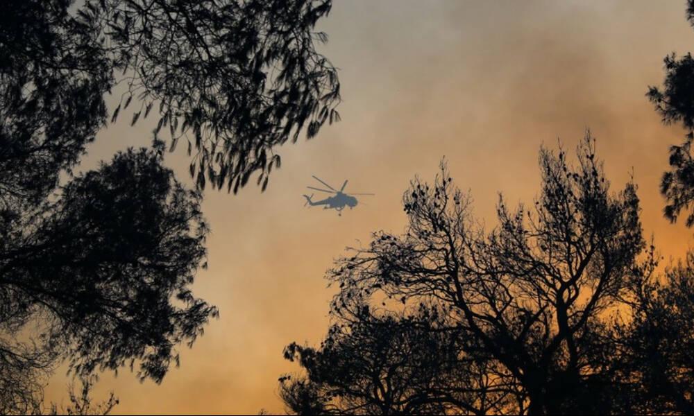 Περιστέρι: Δίπλα στις πυρόπληκτες περιοχές (photo)