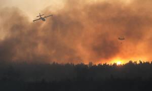 ΑΕΚ: Η φωτιά στη Βαρυμπόμπη επηρέασε την προπόνηση (photos)