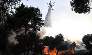 Φωτιά Βαρυμπόμπη: Βίντεο ντοκουμέντο! Πώς ξεκίνησε η πυρκαγιά - Οι ισχυρές εκρήξεις