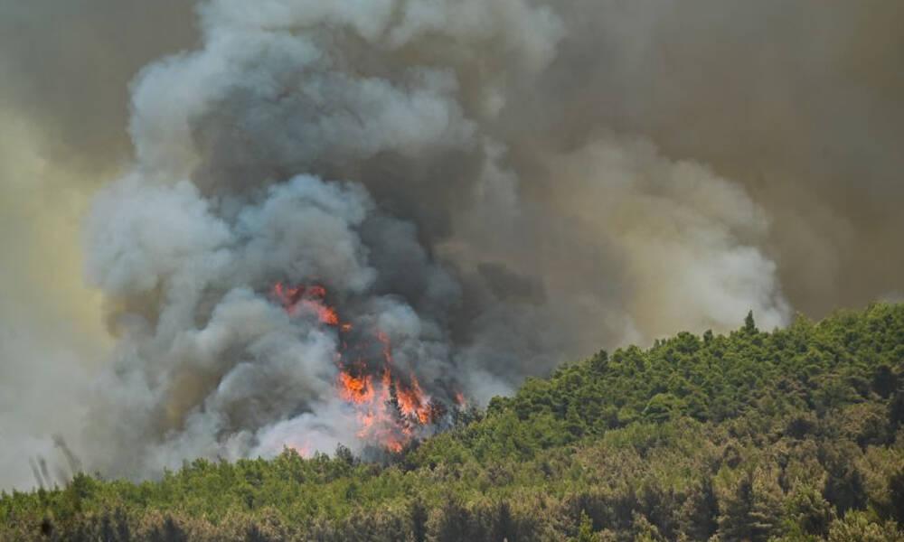 Πύρινος εφιάλτης στη Βόρεια Αττική: Καίγονται σπίτια σε Δροσοπηγή και Κρυονέρι