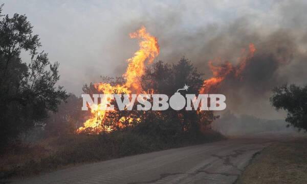 Φωτιά στην Αττική: Oι φλόγες μπήκαν μέσα στην Ιπποκράτειο Πολιτεία